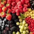 Плодово-ягодные весна 2020