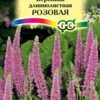 Вероника длиннолистная Розовая