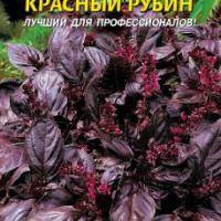 Базилик овощной Красный рубин